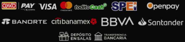 Big Bola México - Reseña de Opinión - Métodos de Pago y Retiro